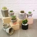 Concrete Pots series I