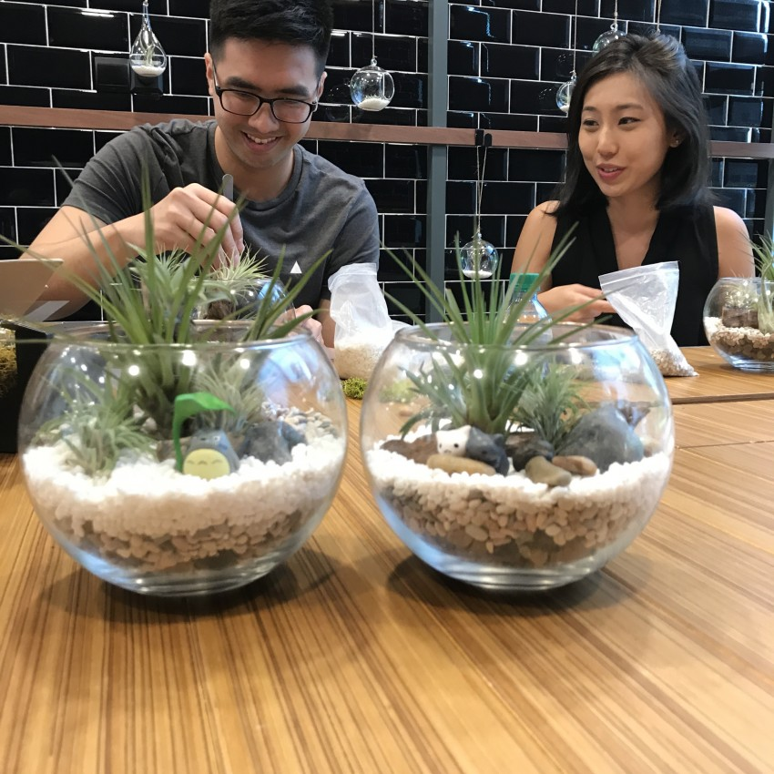 Open Terrarium Workshop | The Green Capsule